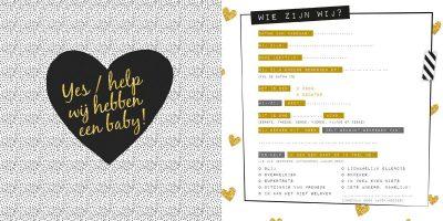 Invulboek Baby's eerste jaar Babyboek