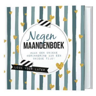 Invulboek Negen maandenboek - maak een unieke herinnering aan een unieke tijd! - Invulboekjes.nl