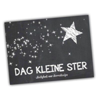 Studio DEMICO Dag kleine ster - babyboek voor sterrenkindjes - invulboekjes.nl