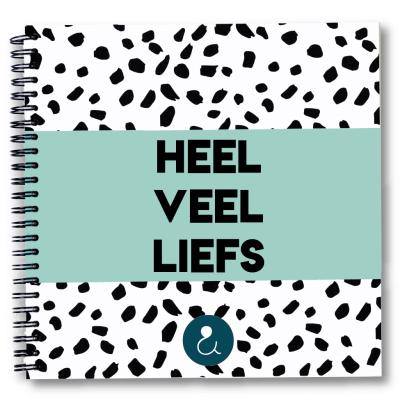 Studio Ins & Outs Kraambezoekboek 'Heel veel liefs' – Mint Boeken in de aanbieding