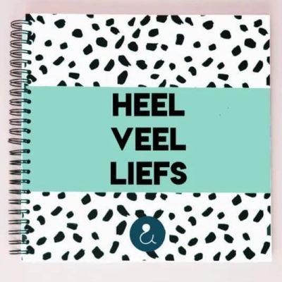 Studio Ins & Outs Kraambezoekboek 'Heel veel liefs' - Mint - voorkant - invulboekjes.nl