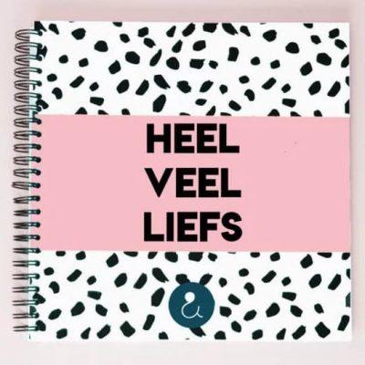 Studio Ins & Outs Kraambezoekboek 'Heel veel liefs' - Roze - voorkant - invulboekjes.nl