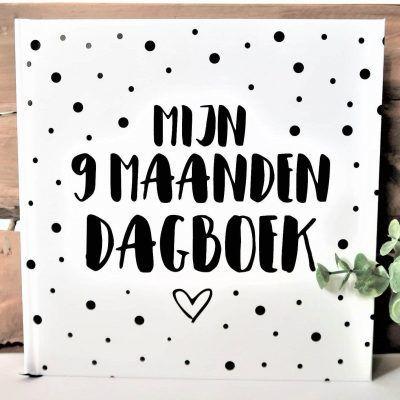 SilliBeads Mijn 9 maanden dagboek - Hardcover - voorkant - invulboekjes.nl