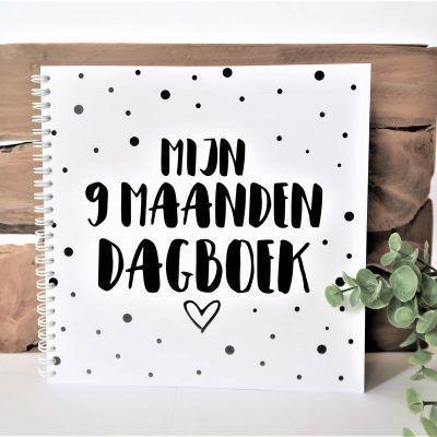SilliBeads Mijn 9 maanden dagboek - Wire-O - voorkant - invulboekjes.nl