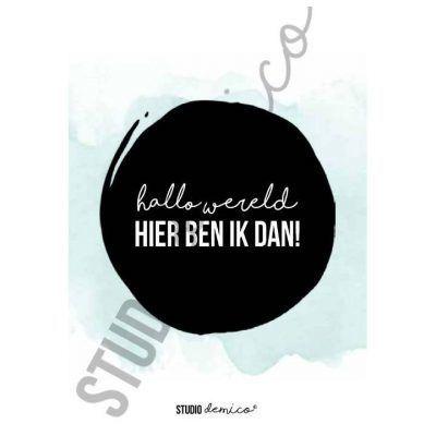 Studio DEMICO Mijlpaalkaarten set - Eerste jaar - kaart 2 - invulboekjes.nl