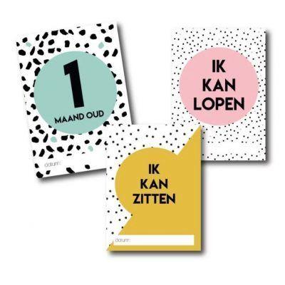 Studio Ins & Outs Mijlpaalkaarten set - Baby's eerste jaar - invulboekjes.nl