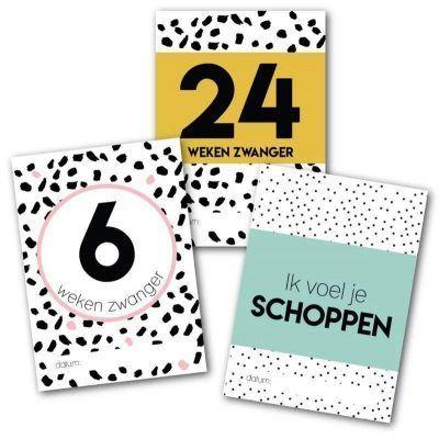 Studio Ins & Outs Mijlpaalkaarten set - Zwangerschap - invulboekjes.nl