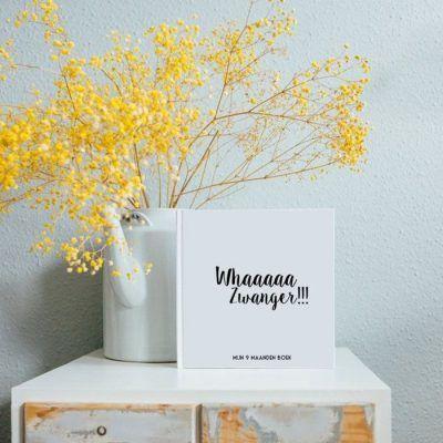 Bonjour to you - Mijn 9 maanden boek - sfeerfoto - invulboekjes.nl