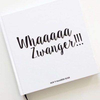 Bonjour to you - Mijn 9 maanden boek - voorkant - invulboekjes.nl