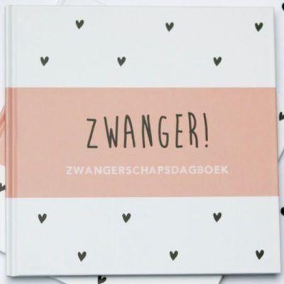 Huisje no.56 - Zwanger! Zwangerschapsdagboek - Roze