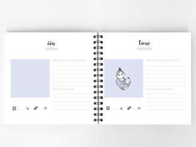 Atelier Pix - Hallo baby - Eerste jaar boek - Roze - 4 - invulboekjes.nl