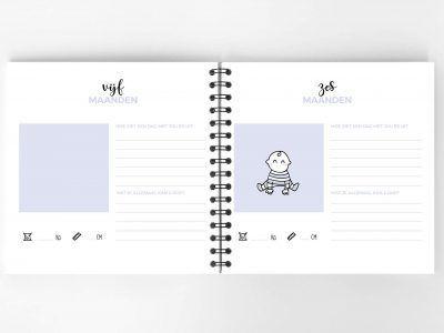 Atelier Pix - Hallo baby - Eerste jaar boek - Roze - 5 - invulboekjes.nl