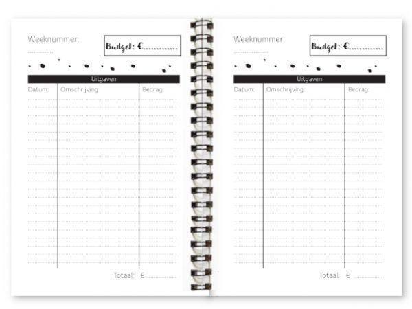 Fyllbooks Budgetplanner