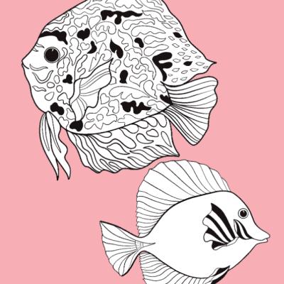 Zilver kleurboek – Coral Reef Kleurboek dieren