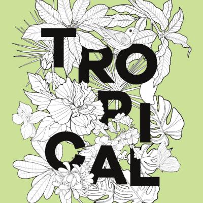 Zilver kleurboek – Tropical Kleurboek dieren