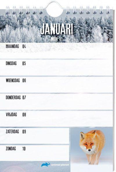Animal Planet Weekkalender 2021 Dieren kalenders