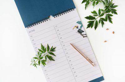 &INK Birthday calender – Jungle Dieren kalenders