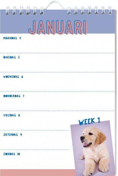 Honden Weekkalender 2021 Dieren kalenders