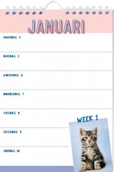 Katten Weekkalender 2021 Dieren kalenders