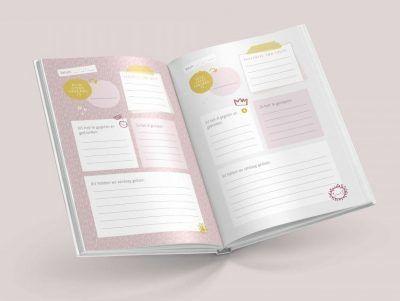 Maan Amsterdam Mijn oppasboek – Roze Creche & oppasboek