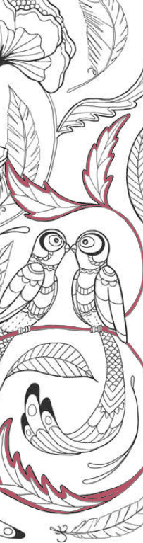 De mooiste kleurboekenleggers om in te kleuren – Vogels Boekenleggers