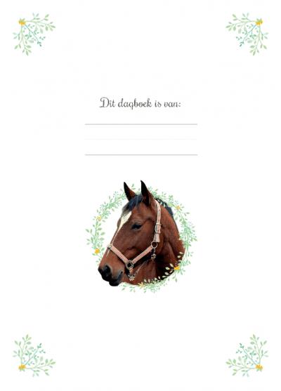 Mijn geheime dagboek – Paarden Boeken in de aanbieding