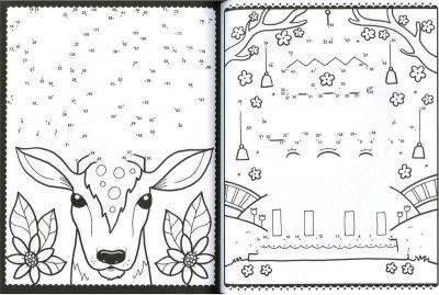 Van punt tot punt kleur- en tekenplezier Kikker tekenboek Kleurboek dieren