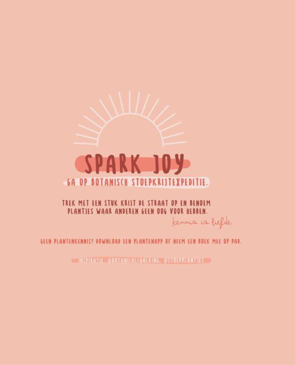Bucketlist – The Joy List Bucketlist boek