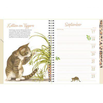 Franciens Katten Bureau-agenda 2022 Kittens Bureau agenda