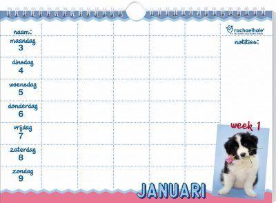 Honden Familieplanner 2022 – Rachael Hale Dieren kalenders