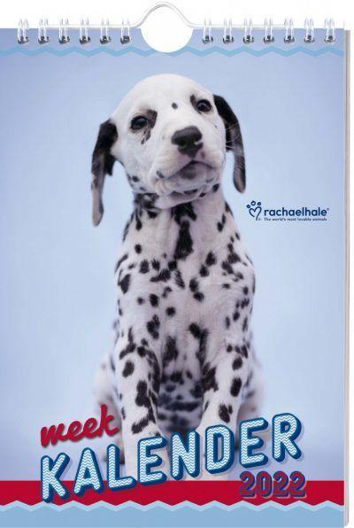 Honden Weekkalender 2022 – Rachael Hale Dieren kalenders