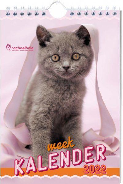 Katten Weekkalender 2022 – Rachael Hale Dieren kalenders
