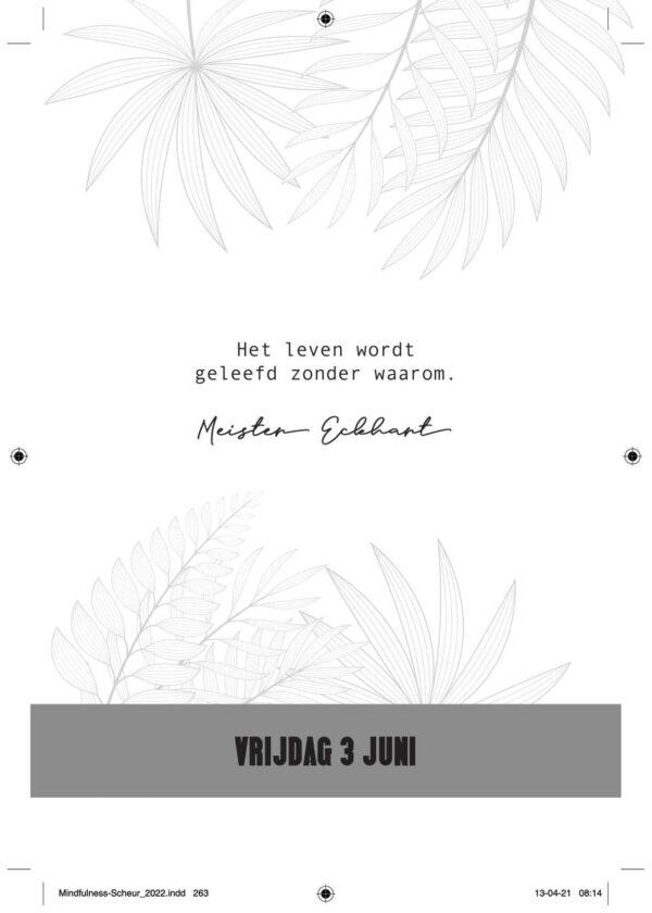 Minfulness Scheurkalender 2022 Kalenders voor 2022